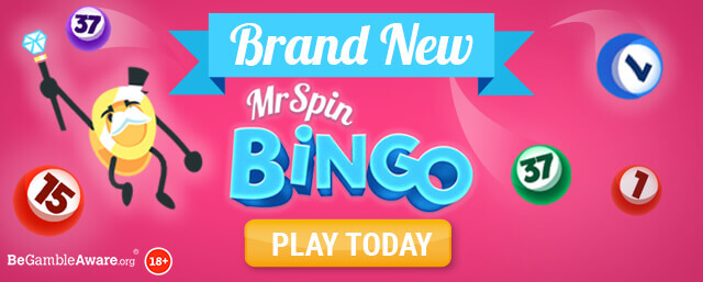 Brand New Online Bingo at Mr Spin online casino - Play today